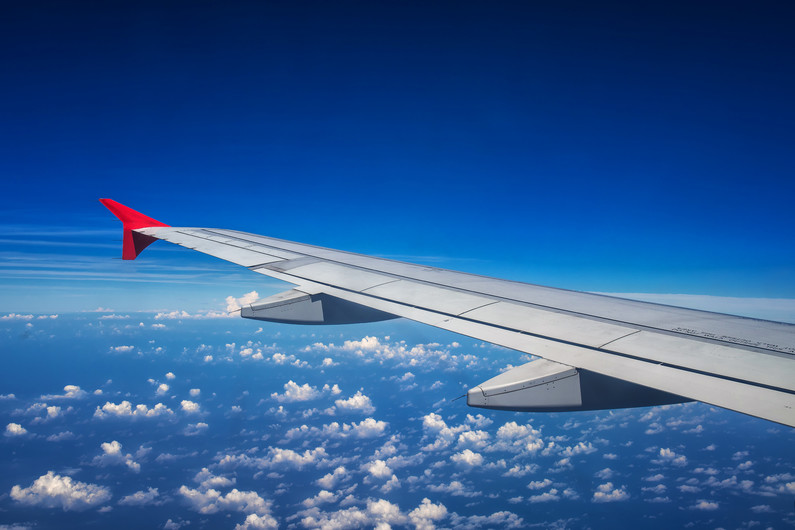 Airplane wing 00838