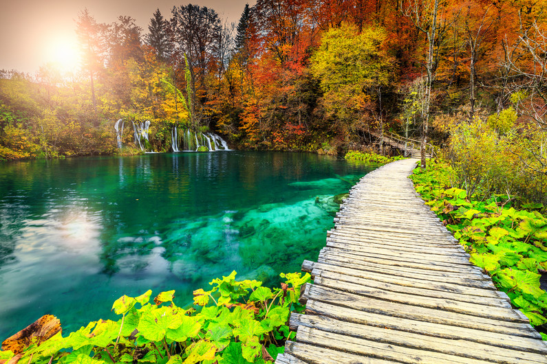 Amazing wooden path in Plitvice lakes 00428