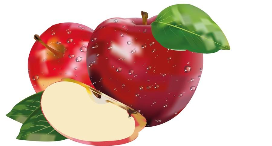 Apple 00331