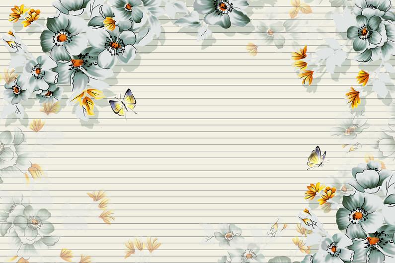 бабочки 01088