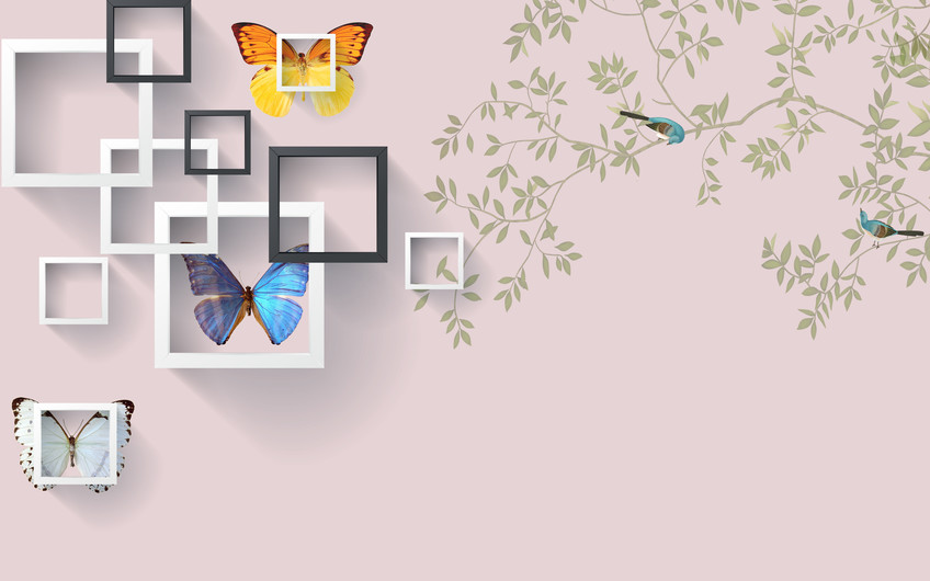 бабочки и квадраты 01216