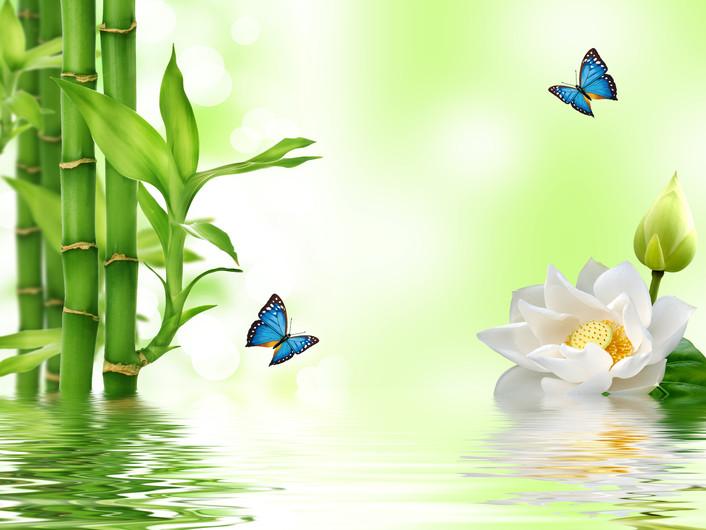 бамбук и цветы 01232