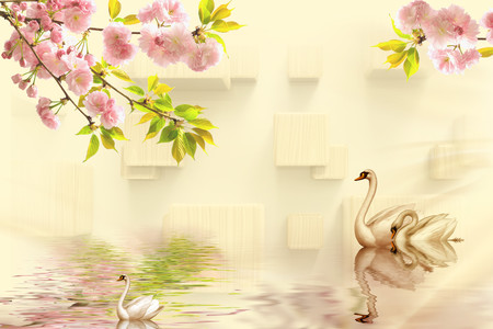 Beautiful swans family 01014