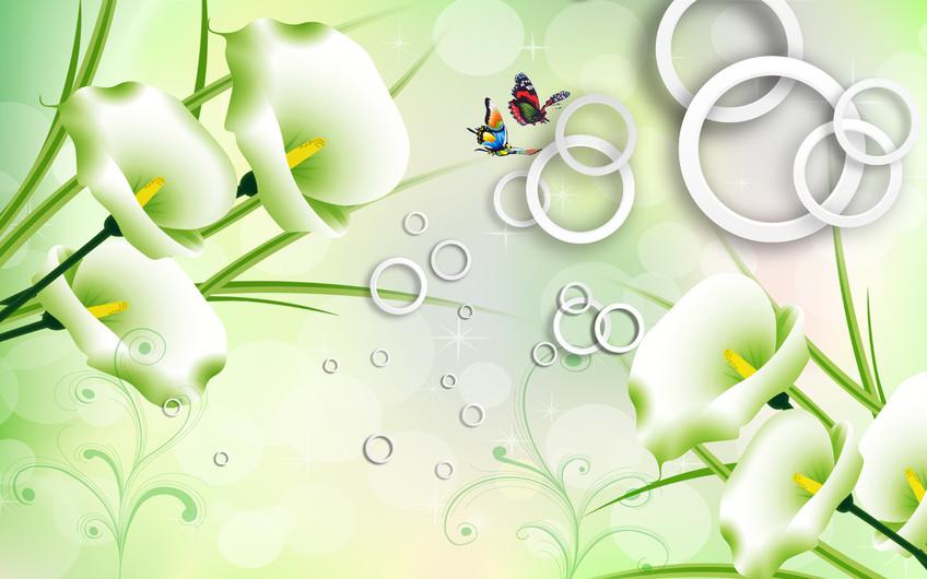 белокрыльник 01051