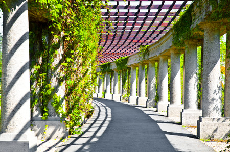 Bloom-pergola, Wroclaw 00935