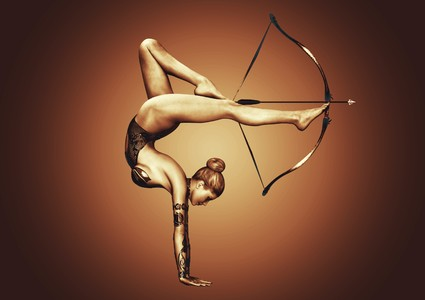 Bow and arrows 00325