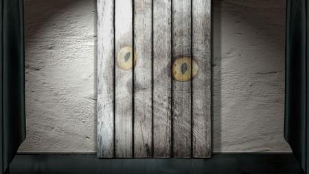 Cat ghost 00132