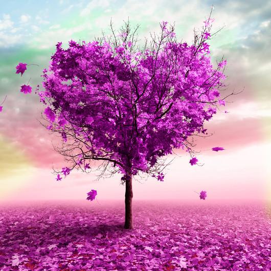 дерево любви 01108