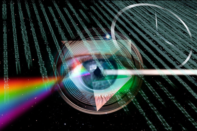 Eye close-up of NASA 00993