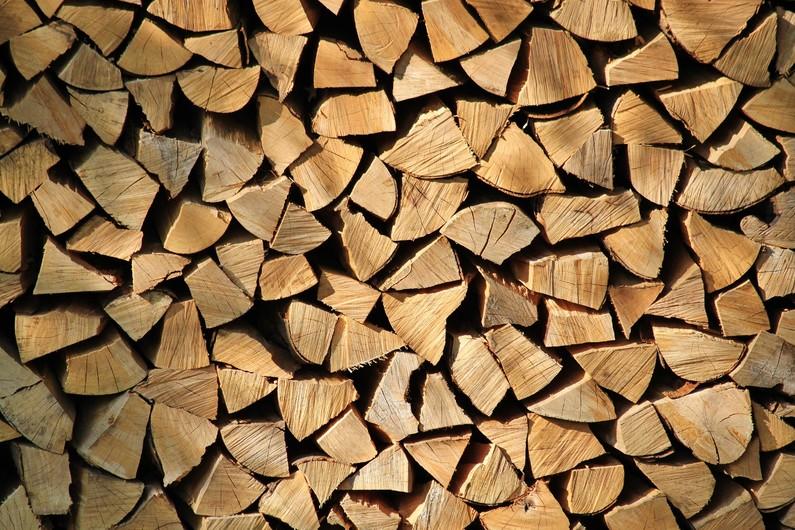 Firewood 00519