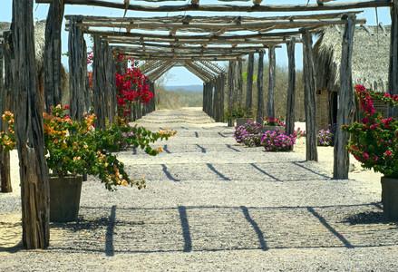 Flower trestle 00916