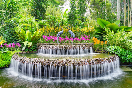 Fountain in Orchid garden of Singapore 00715