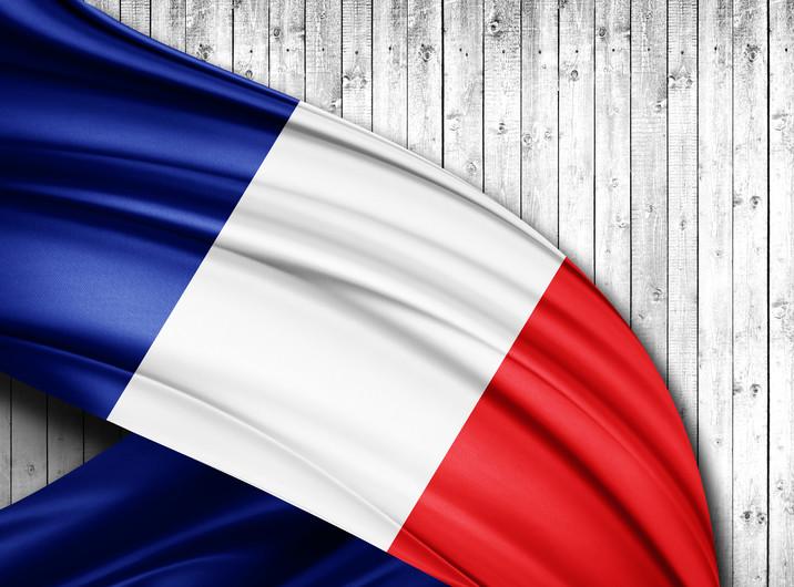 France flag 00306