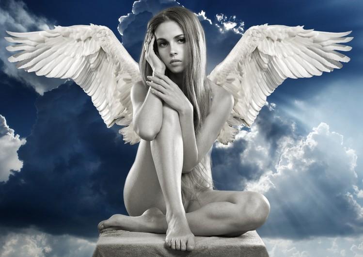 Girl - angel 00326