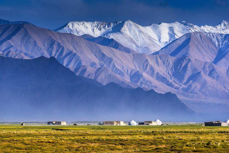 Golden meadows in Xinjiang 00990