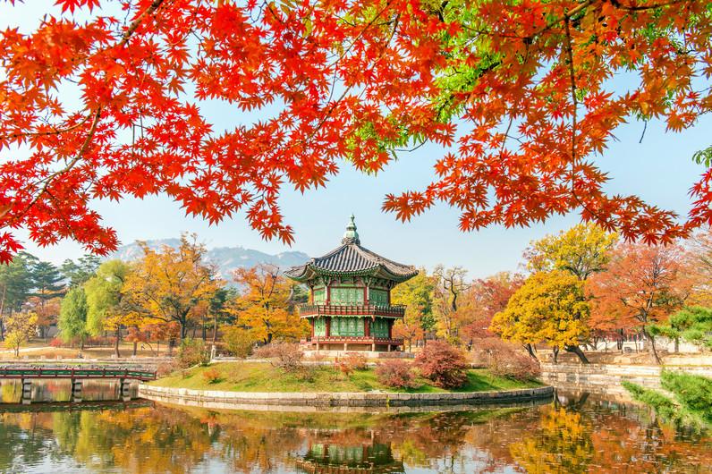Gyeongbokgung Palace, Korea. 00989