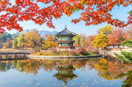 Gyeongbukgung autumn in Korea 00487