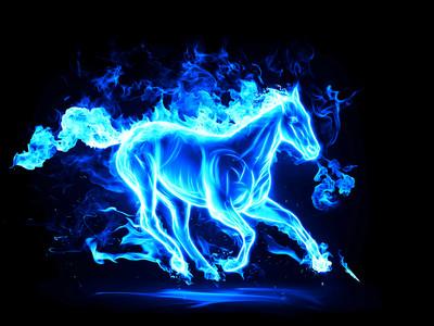 Ice horse 00245
