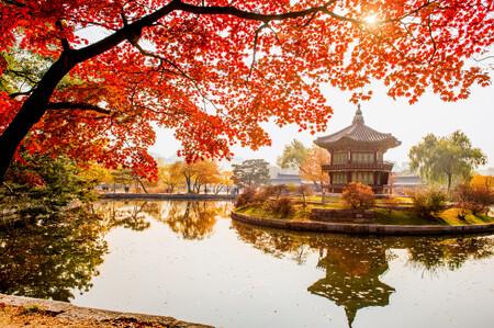 Китайское озеро 01411