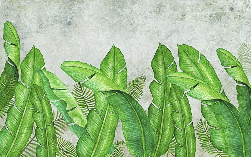 листья 01379