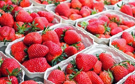 Lot of strawberries 00673