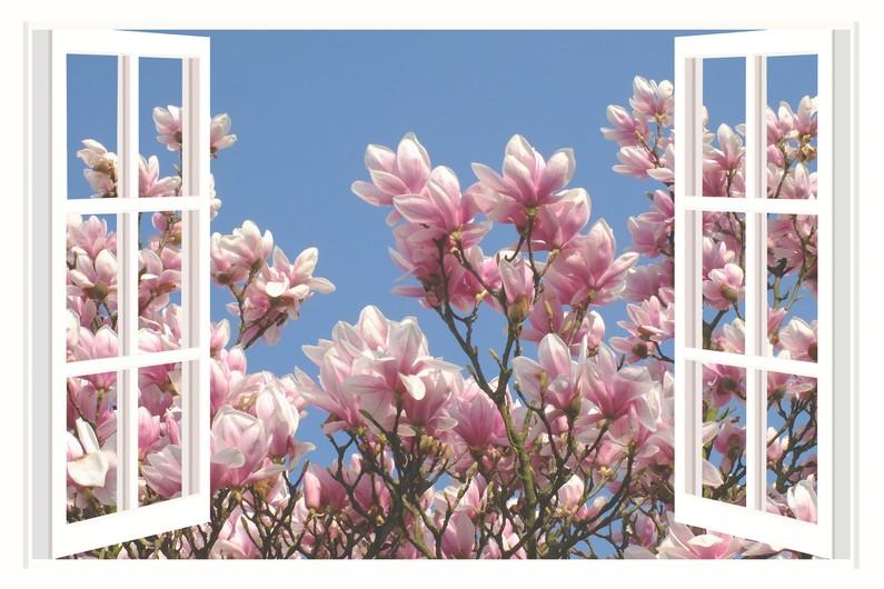 Magnolia 00560