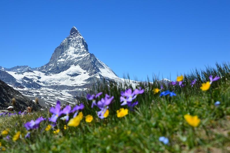 Matterhorn 00566