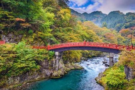 Мост 01324