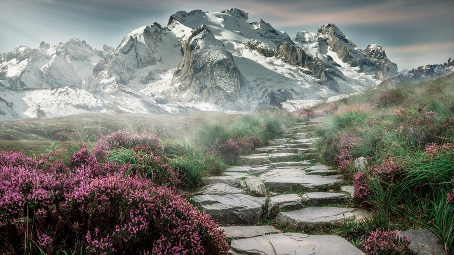 Mountain landscape 00579