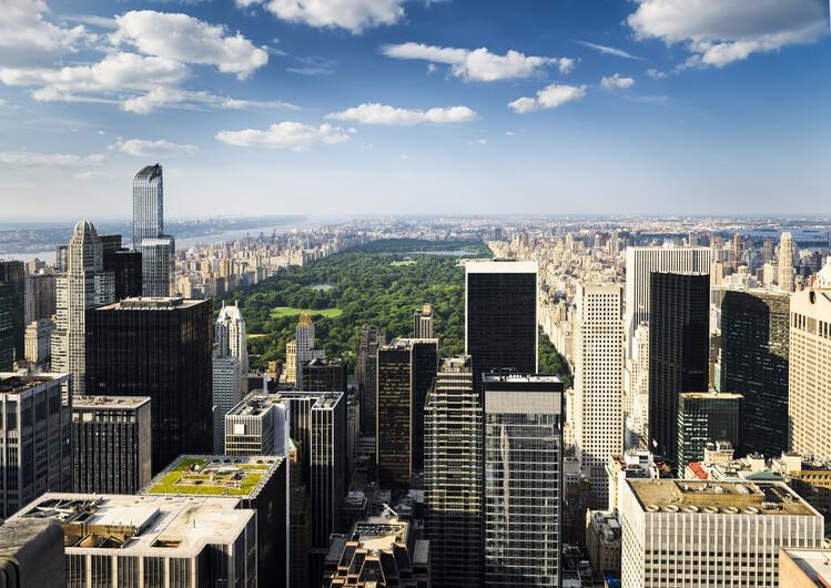 Нью-Йорк 01505
