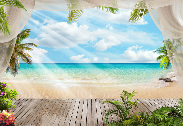 Paradise under the palms 00490