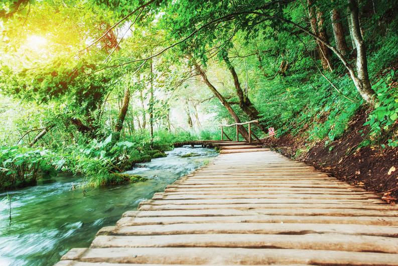 Plitvice lakes, Croatia 00420