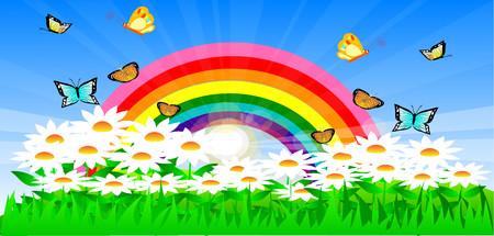 Rainbow with daisies 00377