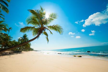 райский пляж 01357