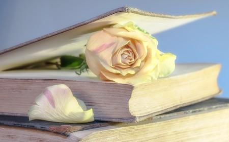 Rose in the book 00632