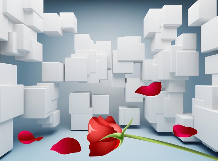 розы 01068