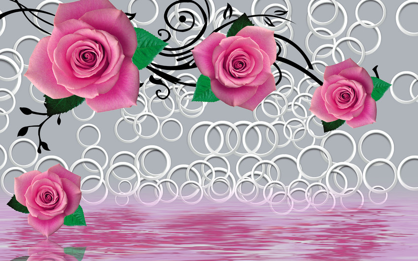 розы 01143