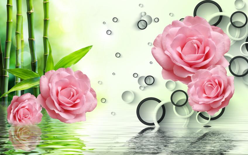 розы 01211