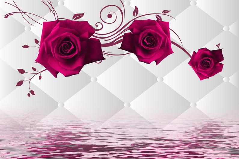 розы 01221
