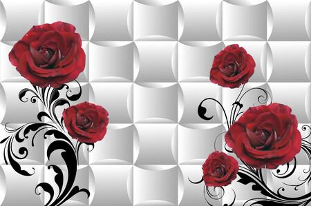 Розы 01458