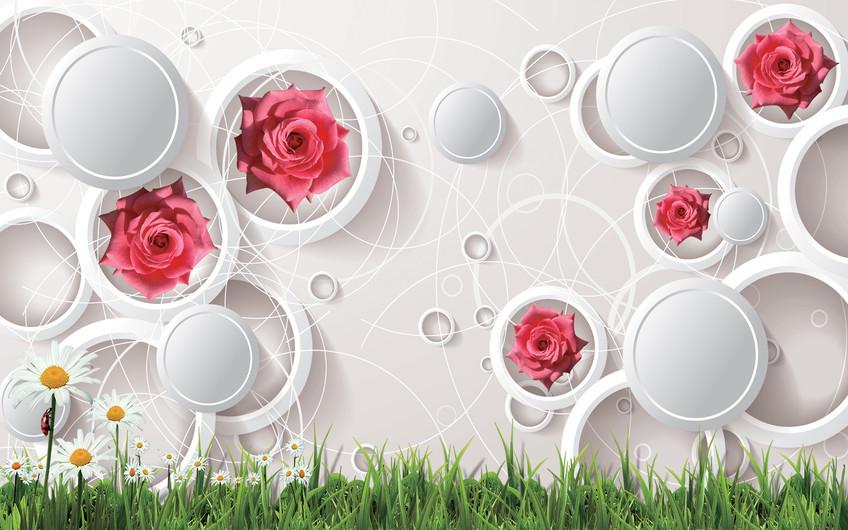 розы в кругах 01231
