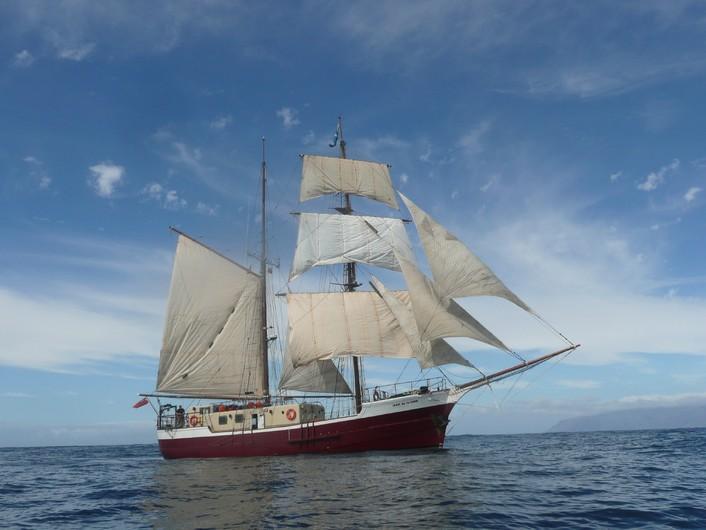 Ship 00644