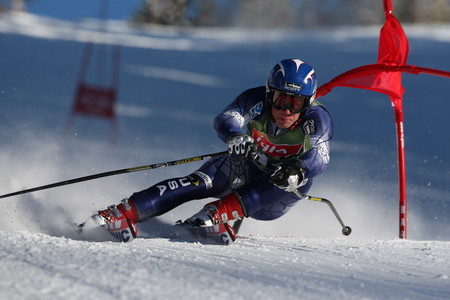 Skiing slalom 00081VG