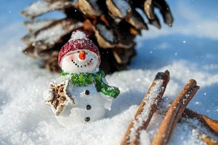 Snow-man 00651