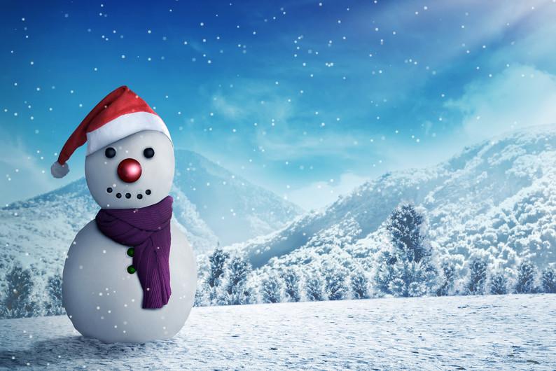Snowman 00276