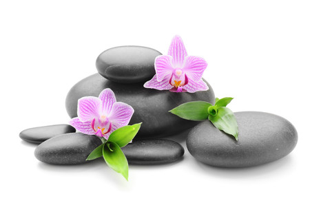 Spa  zen stones and flower 00863