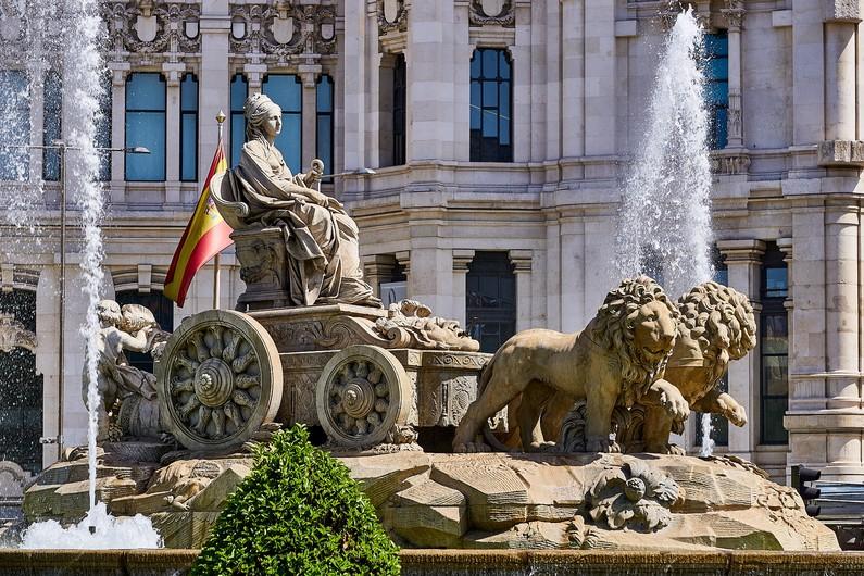 Spain lions 00659