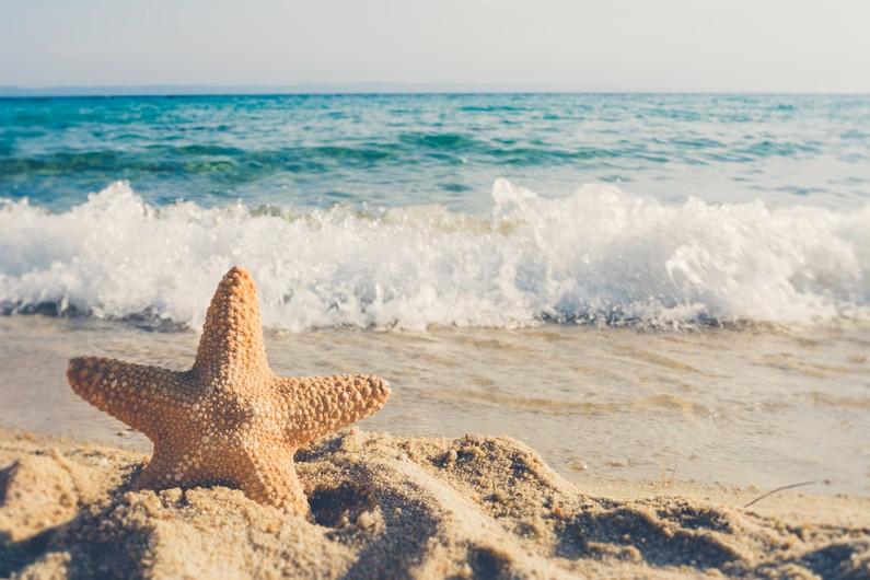 Star on the beach 00109