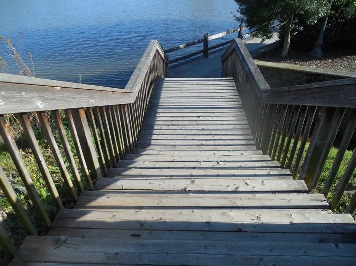 Steps 00666
