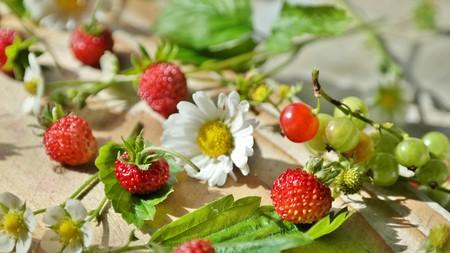 Strawberry color 00674